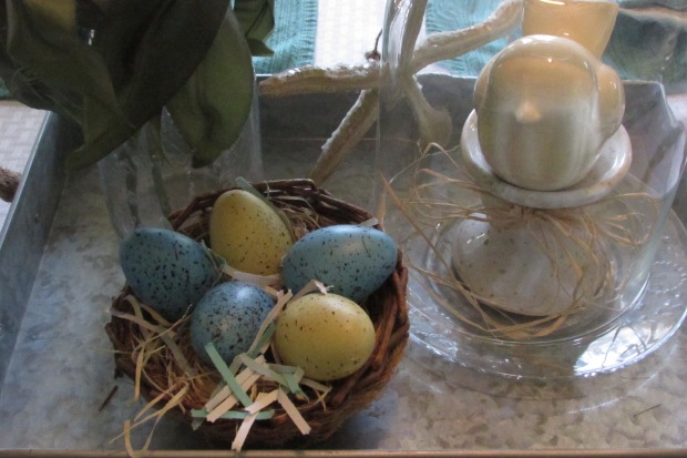 Spring Nest and Eggs
