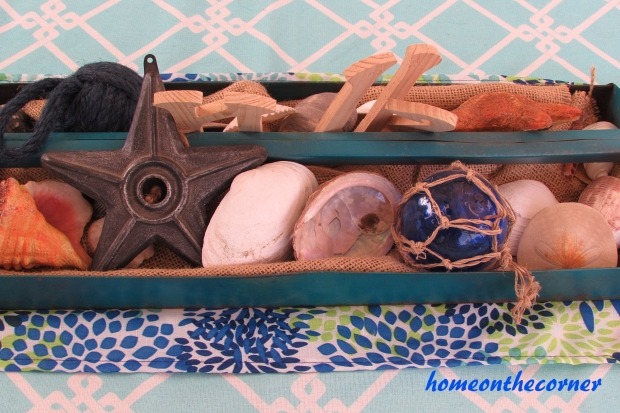 Seashells in an old tool box tray.