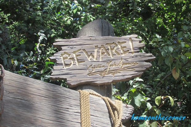 Beware Pirate Island Disneyland
