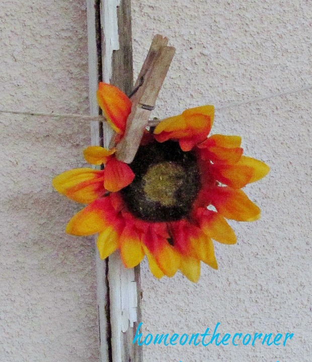 Transitional Back Patio Sunflower 2015