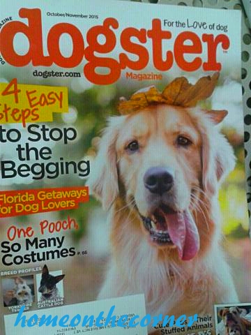 corner news dogster sept. 25, 2015
