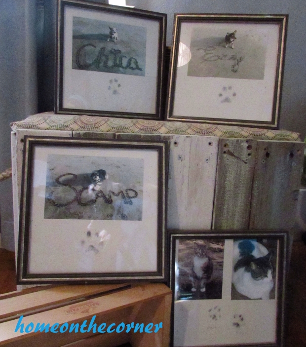 Pawprint and Picture Set