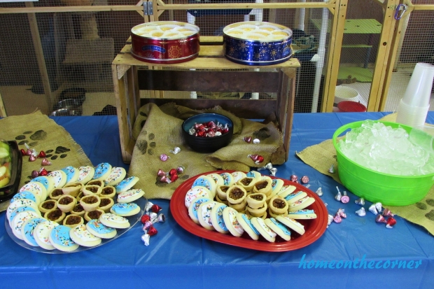 animal shelter volunteer dessert table