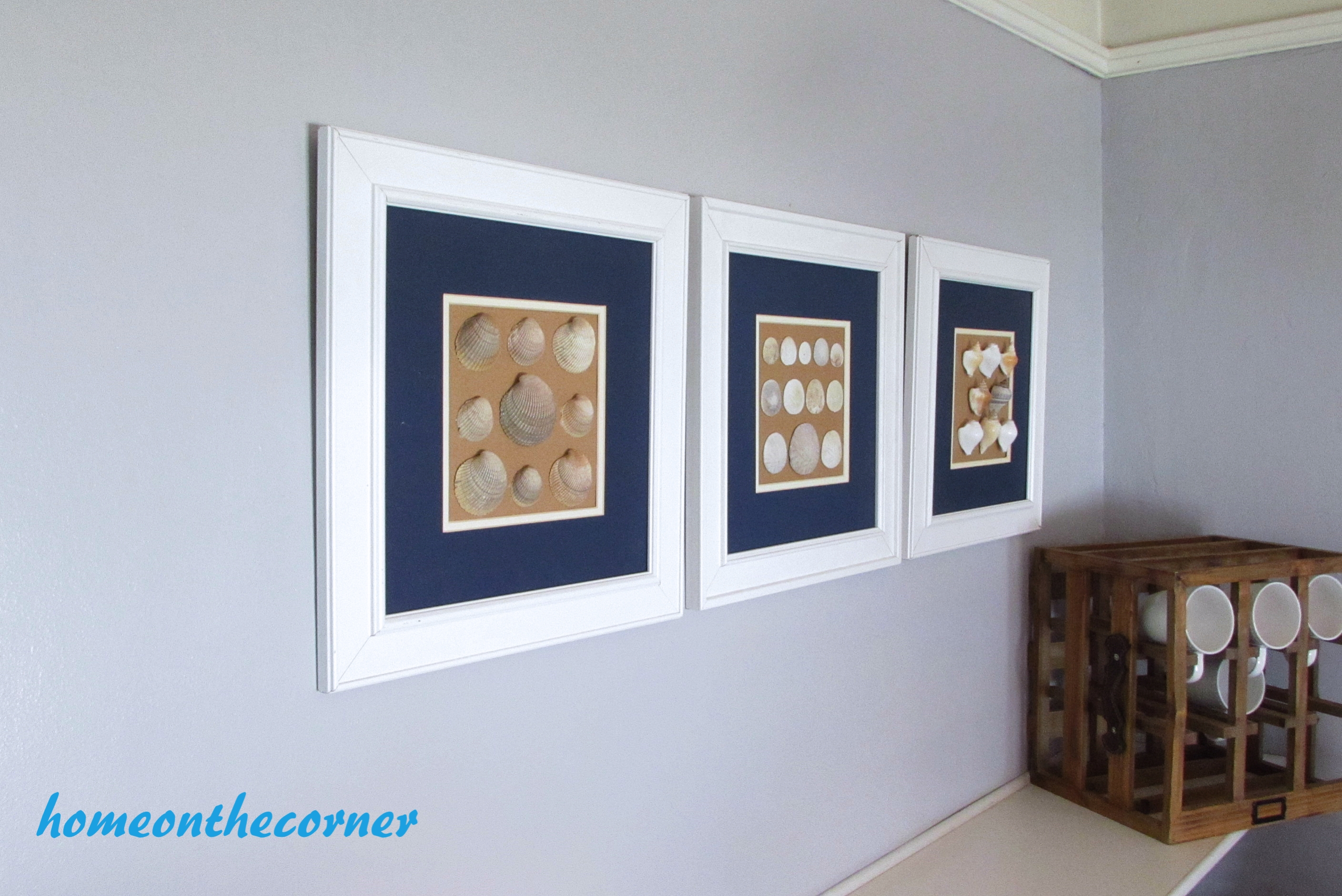 seashell speciman frame set of 3