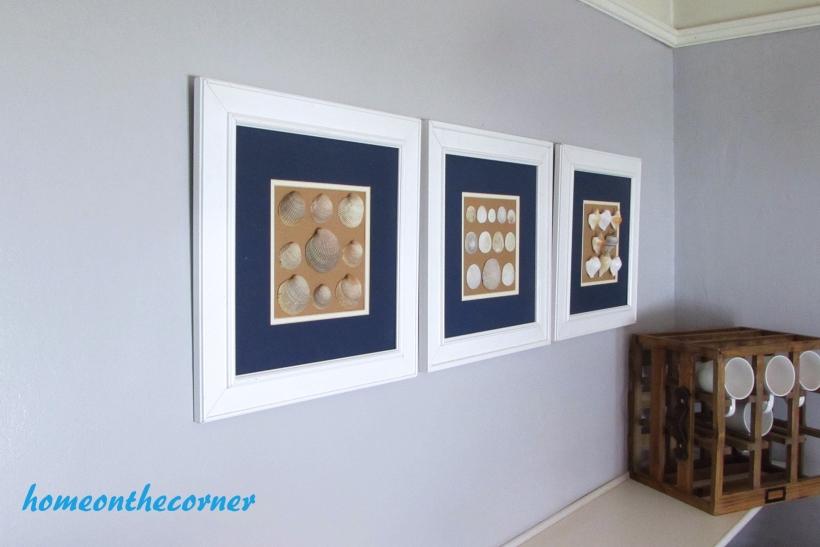 seashell speciman frame set of 3