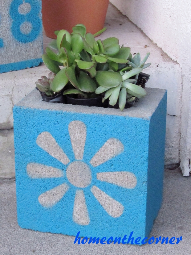 concrete planter stencil succulents