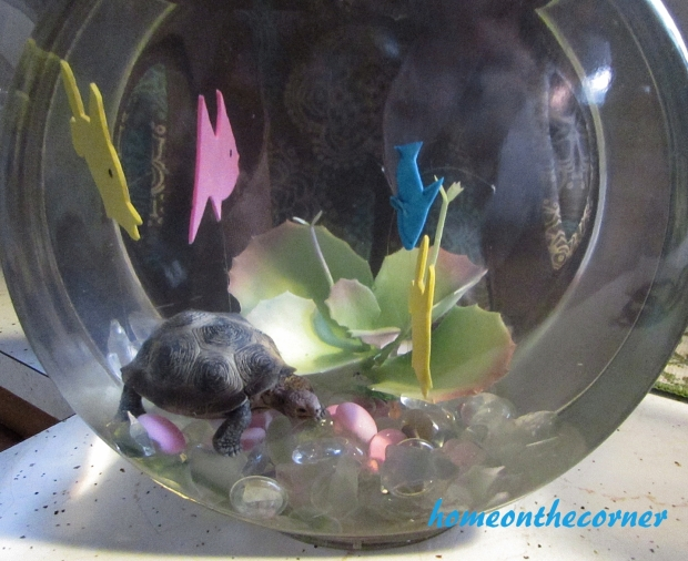 fish bowl with turtle