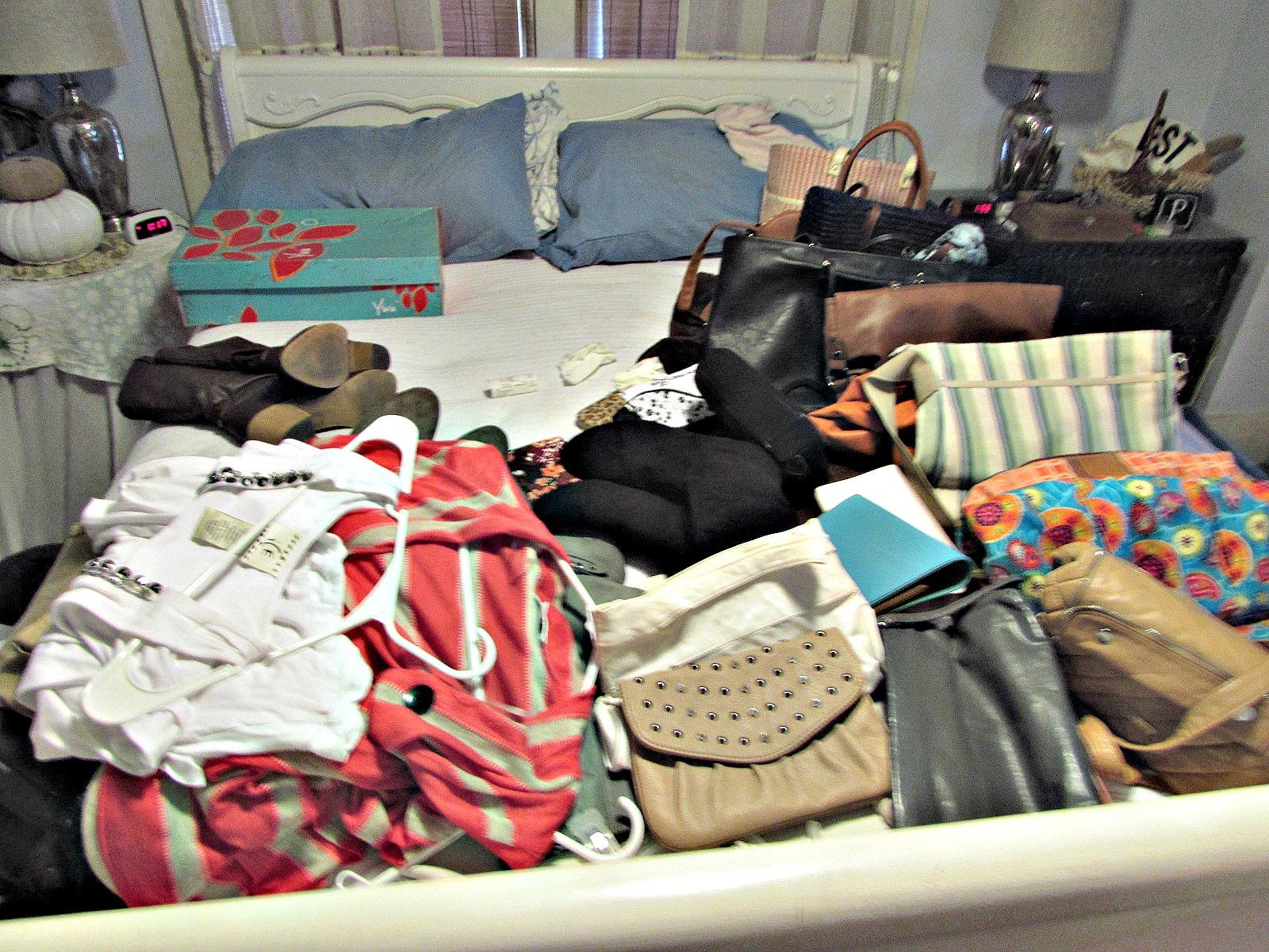 Closet and purse organizer
