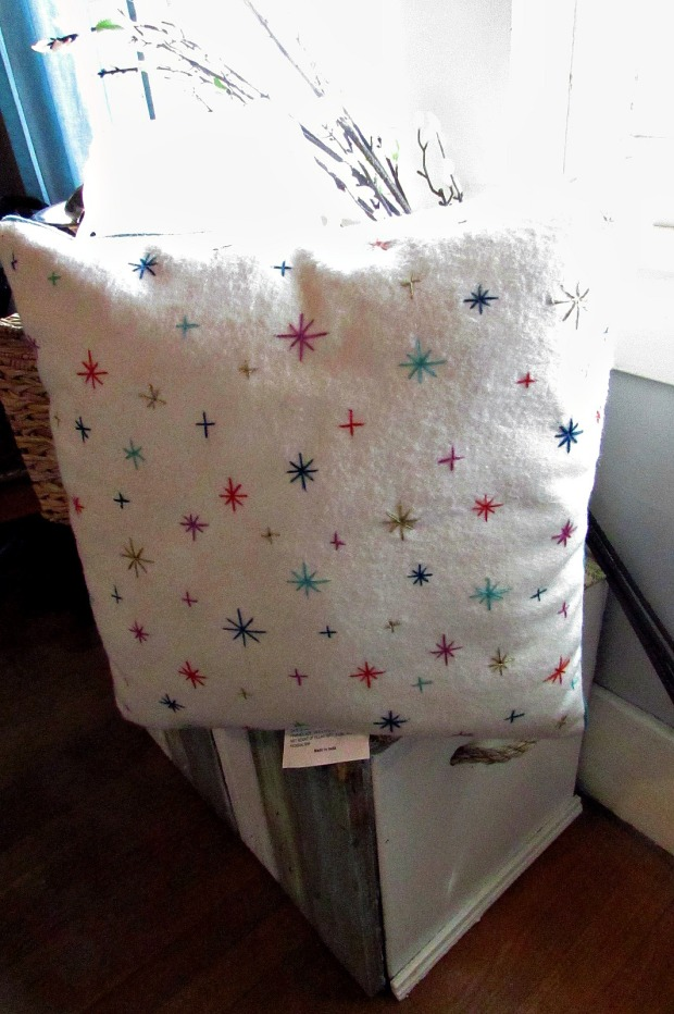 Fabulous Finds and Fashions 51816 pillow