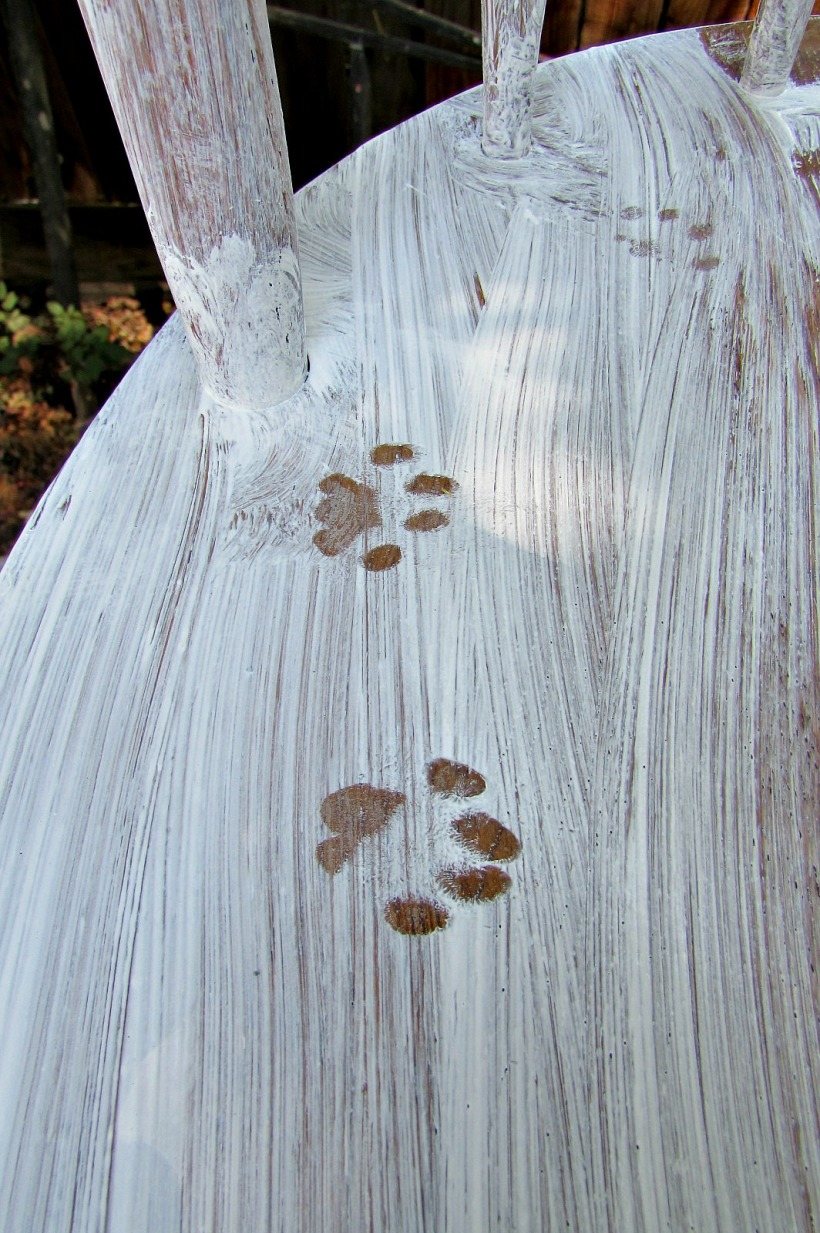 kitchen chair makeover kitty pawprints