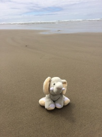 Tantor on the Beach