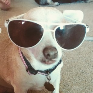 chica with glasses 2