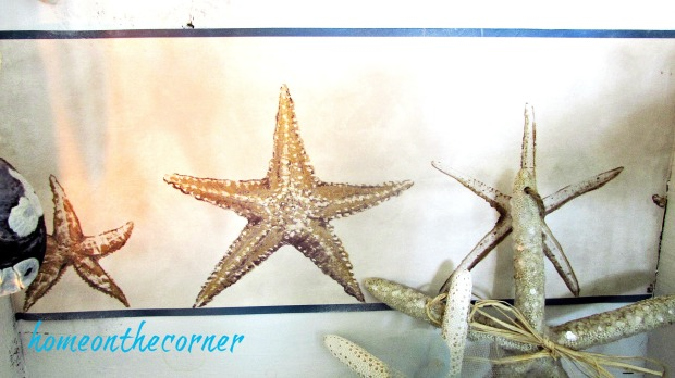 wooden crate starfish wallpaper border