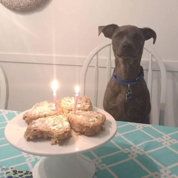 birthday rozy