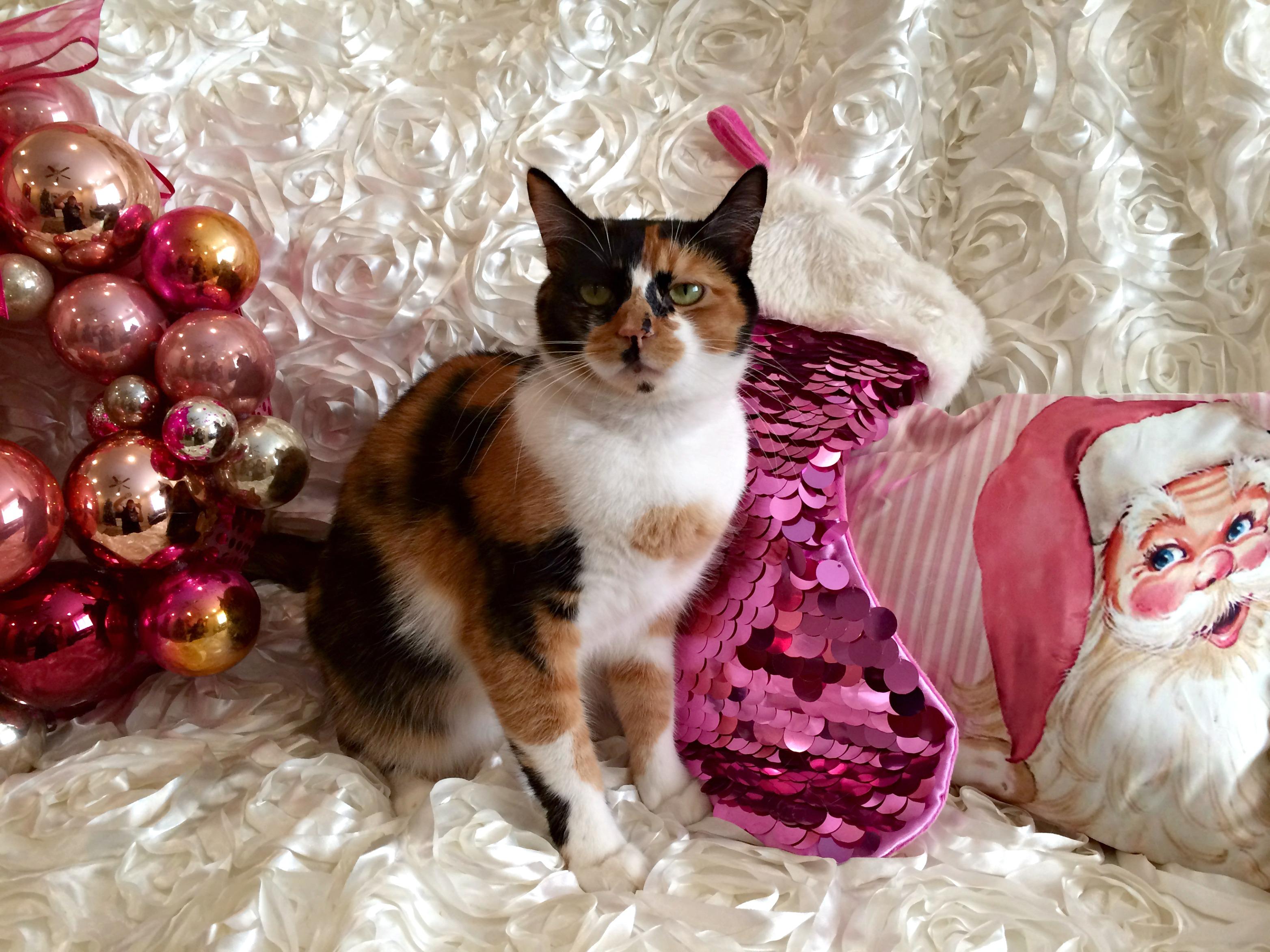 Amelia Pink Christmas