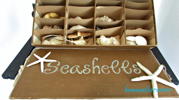seashell box makeover divided shells