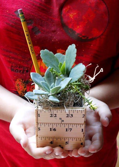ruler planter