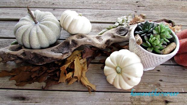fall 2018 back patio coffee table pumpkins