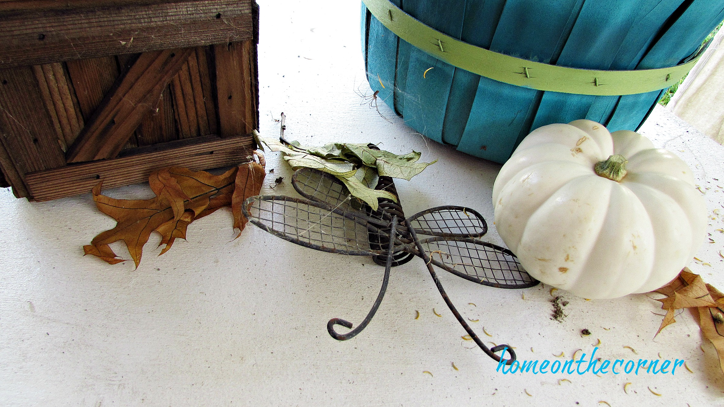 fall 2018 back patio dragonfly white pumpkin