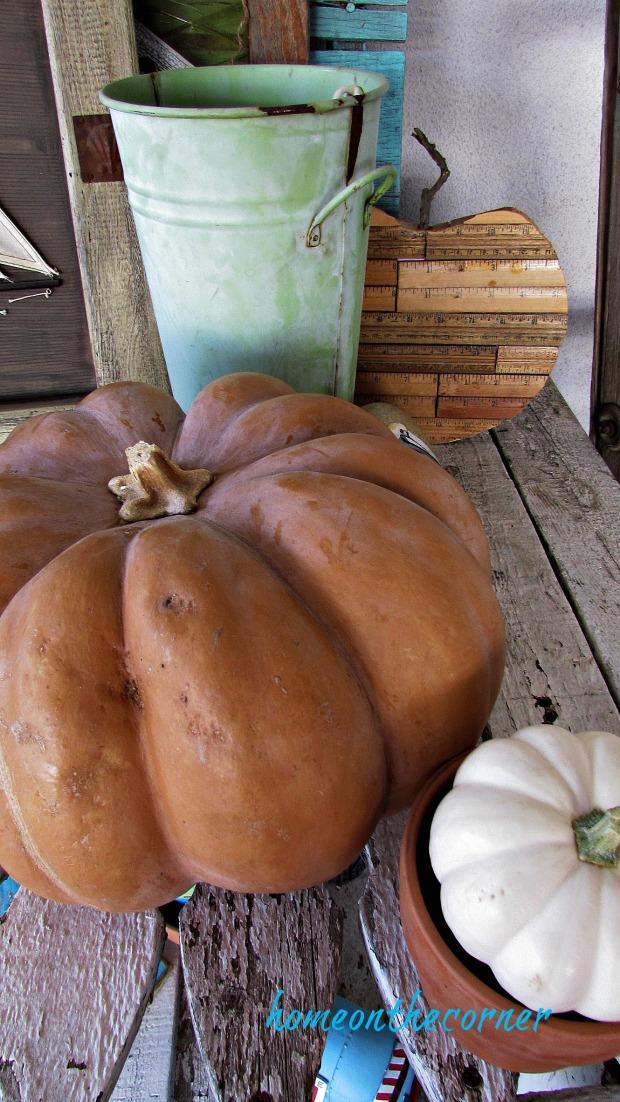 fall 2018 back patio pumpkins and pots