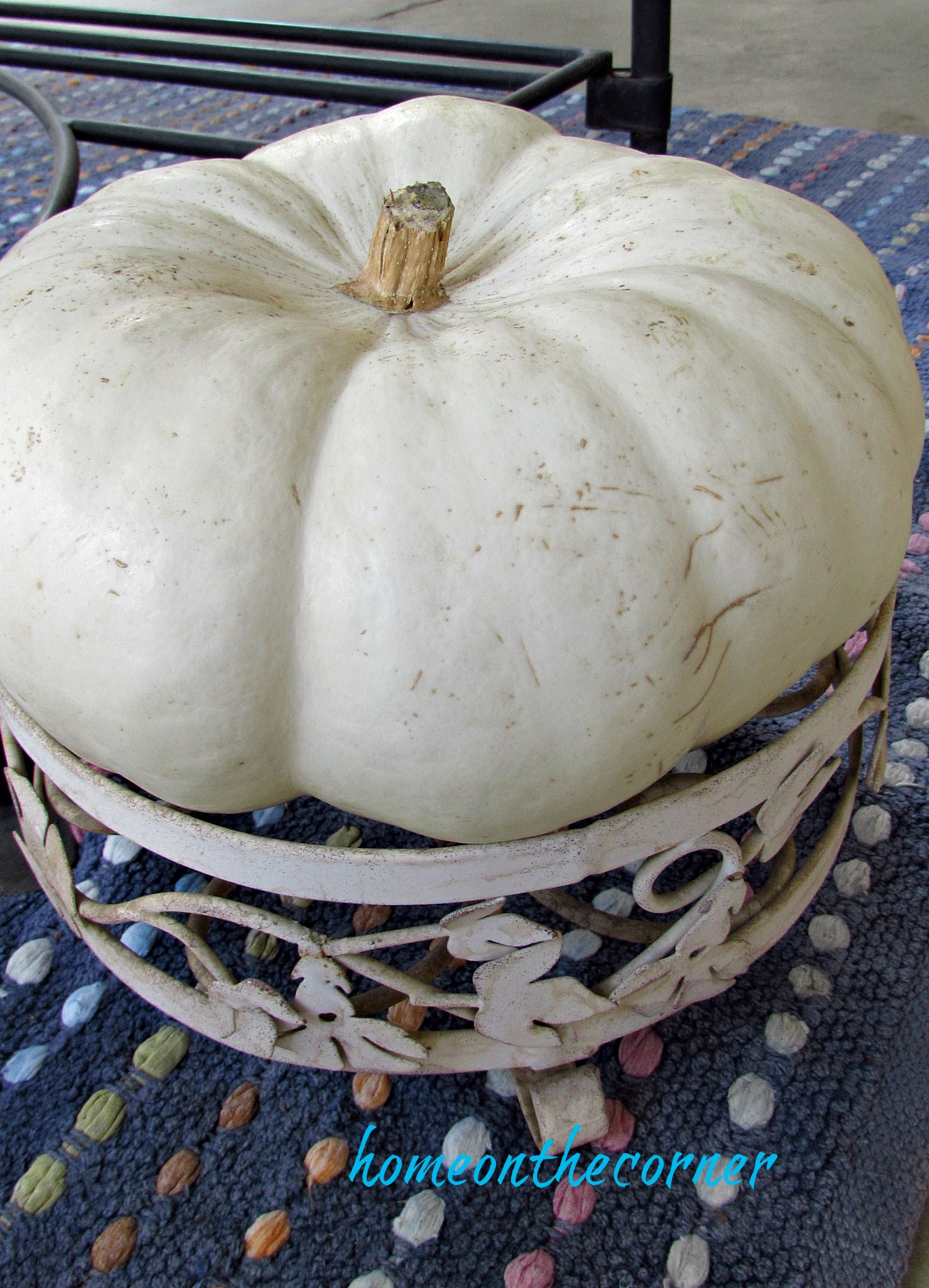 fall 2018 back porch white cinderella pumpkin