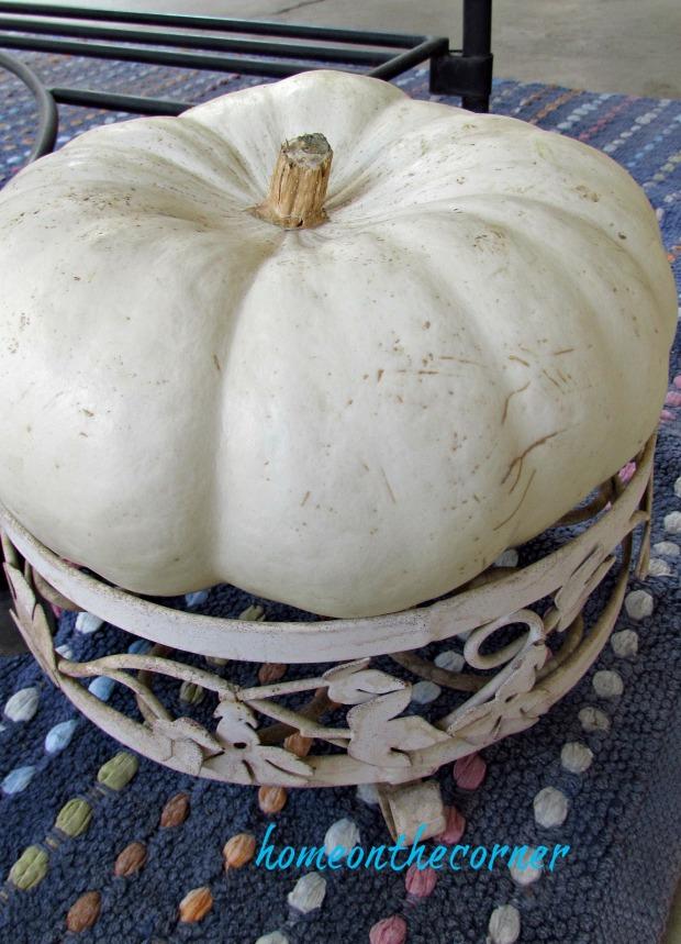 fall 2018 back porch white cinderella pumpkin