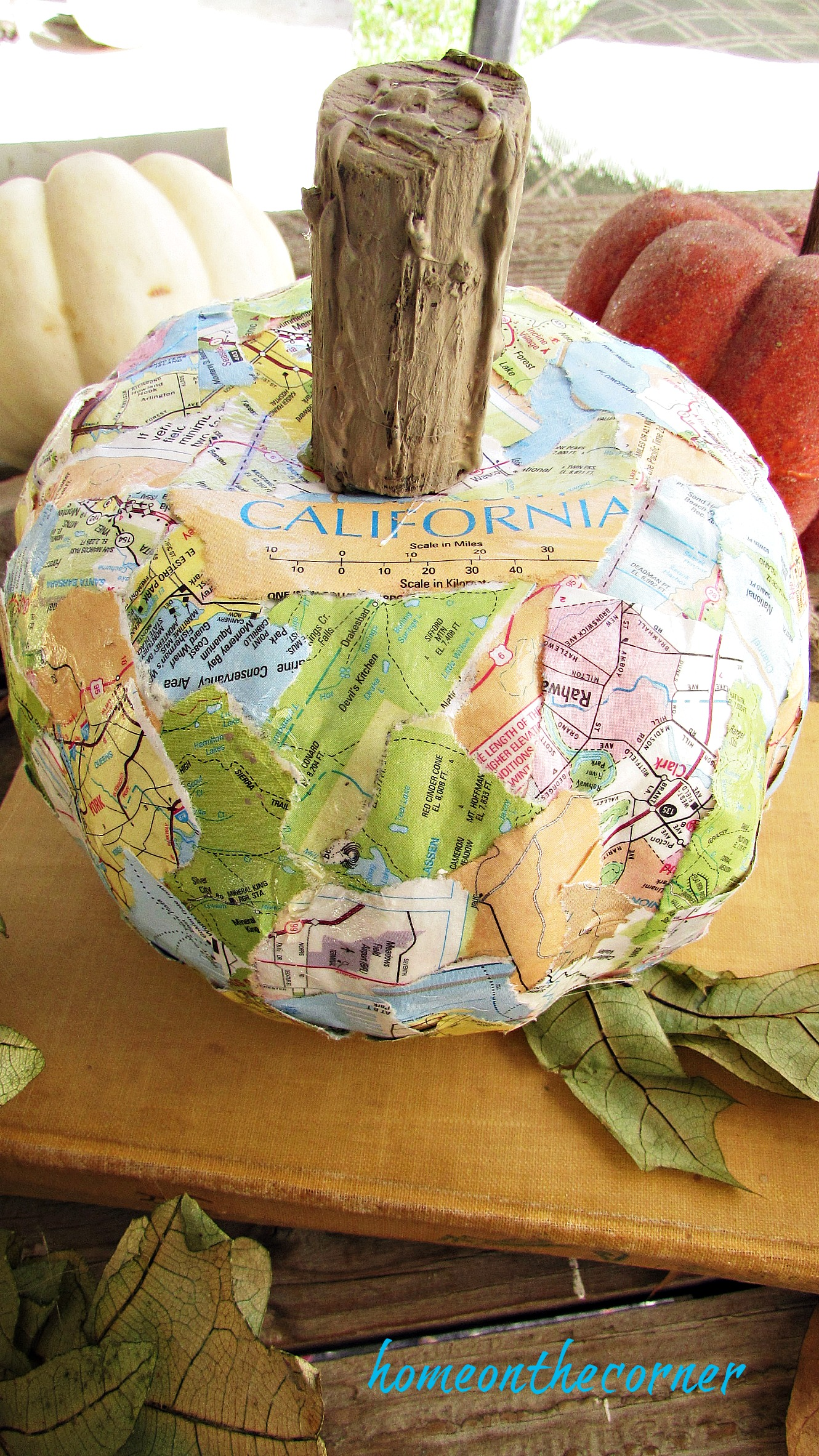 travel map pumpkin on book