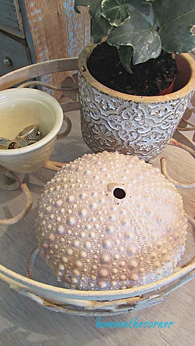 master bedroom dresser seashell