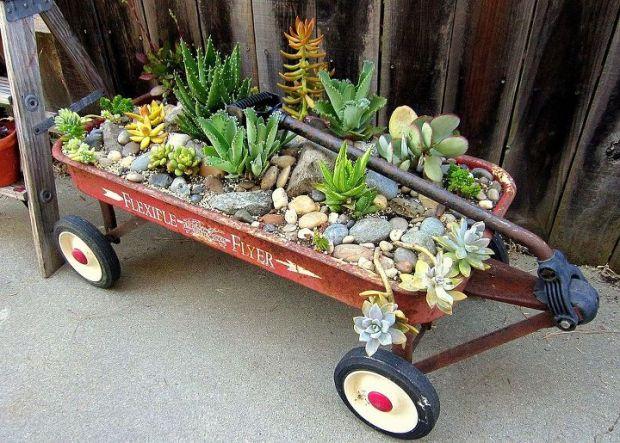 Wagon Garden