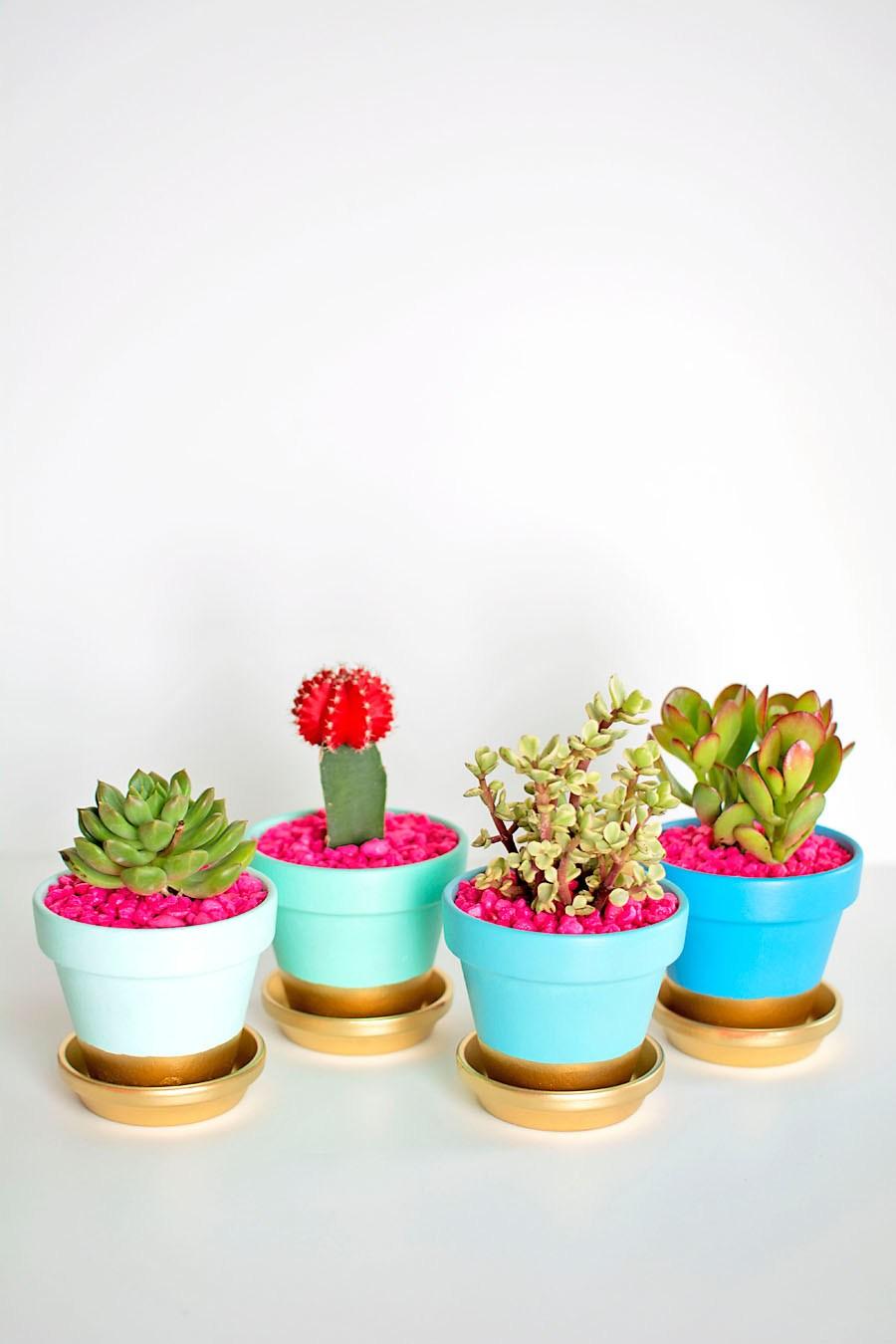 DIY-Gold-Dipped-Plant-Pots