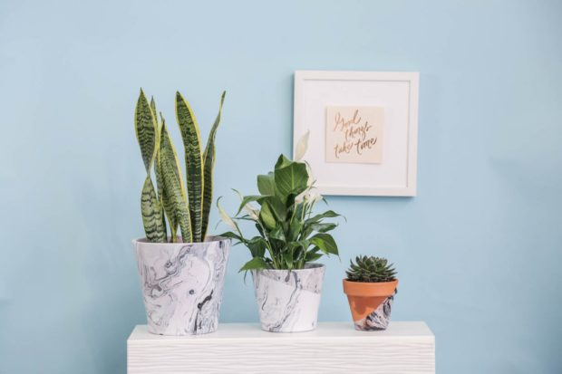 DIY_WaterMarbling_TerraCottaPlanters_Makeful