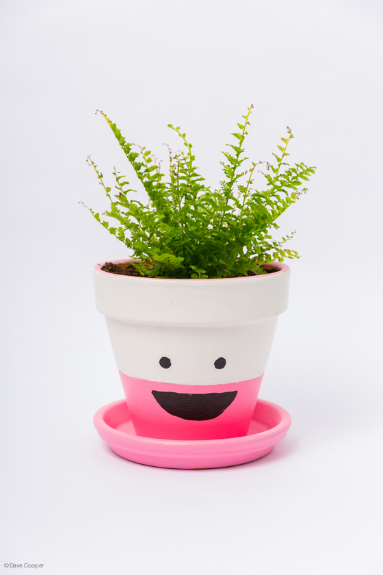 Happy Flower Pot.jpg