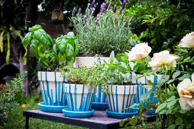 herb-garden-hero.jpg