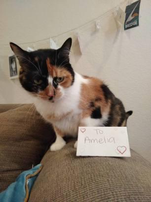 Amelia's Valentine